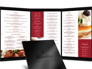 Bindia Restaurant Menu Design